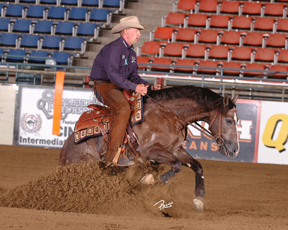 Reining Show Showing Growth Over Last Year