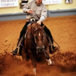 Herd Work Complete at the 2012 NRCHA Hackamore Classic