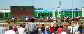 Texas Thoroughbred Racing Sees New Stakes Races