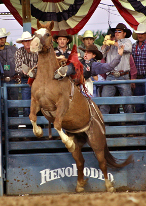 Rodeo Cowboys and Cowgirls Countdown to Vegas