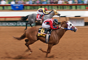 Ruidoso Horses and Horsemen Prominent In Championship Voting