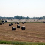 NSAC COMMENTS ON HOUSE FARM BILL MARKUP