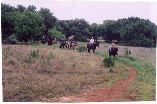 AHC Unwanted Horse Coalition Teams Up With Trail Group