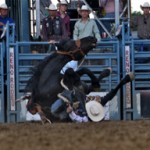 PRCA Weekend Rodeo Wrap-Up