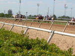 SHRP Coming on the Track 72