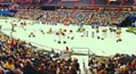 Washington Horse Show Arena Crowd