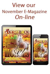 November e-magazine Cover