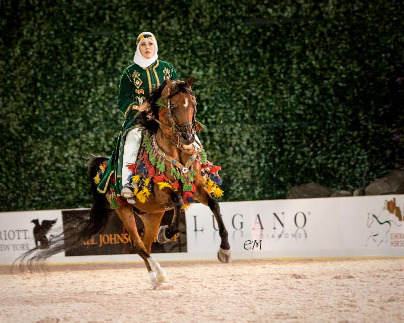 Arabian Horses In The City Taking Center Stage At The